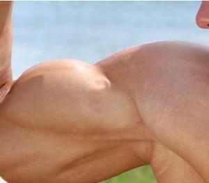 biceps_femural