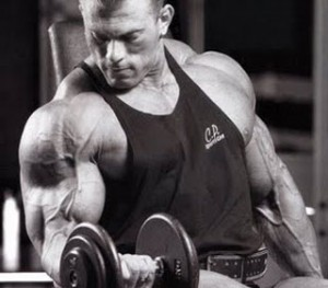 biceps_mare_rapid