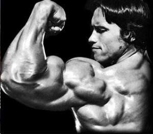 preconceptii_bicepsi