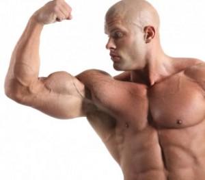 bicepsi_mari