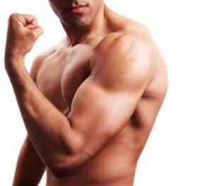 dezvoltarea_bicepsului